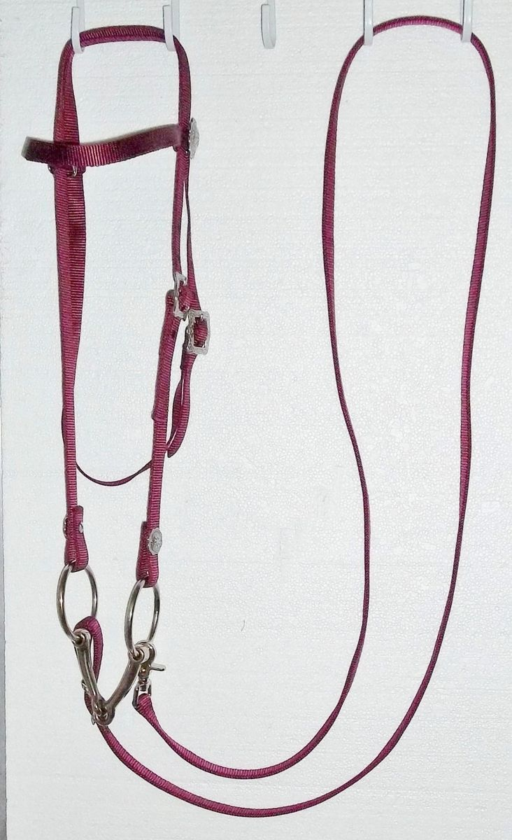 Bridle Headstall Reins Snaffle Bit horse tack trail barrel racing